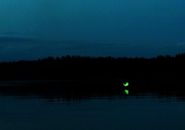 Aleya-Ghost-Lights