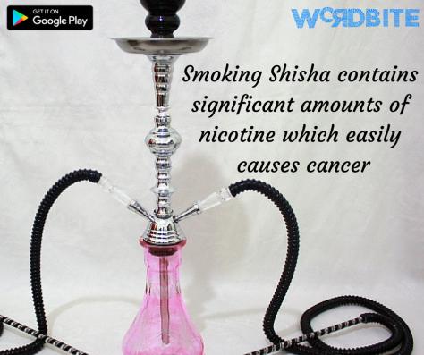 shisha5
